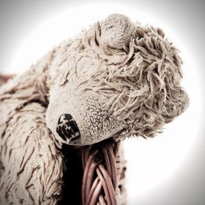 The Lazy Teddy